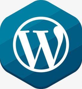 WordPress调用CSS最常用的方法有哪些? (https://www.wpcun.com/) wordpress教程 第1张